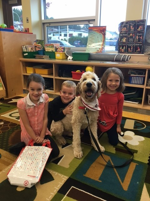 Westview's Therapy Dog, Jerry